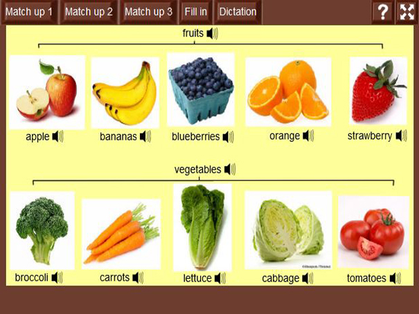 Fruits And Vegetables English Guide Org